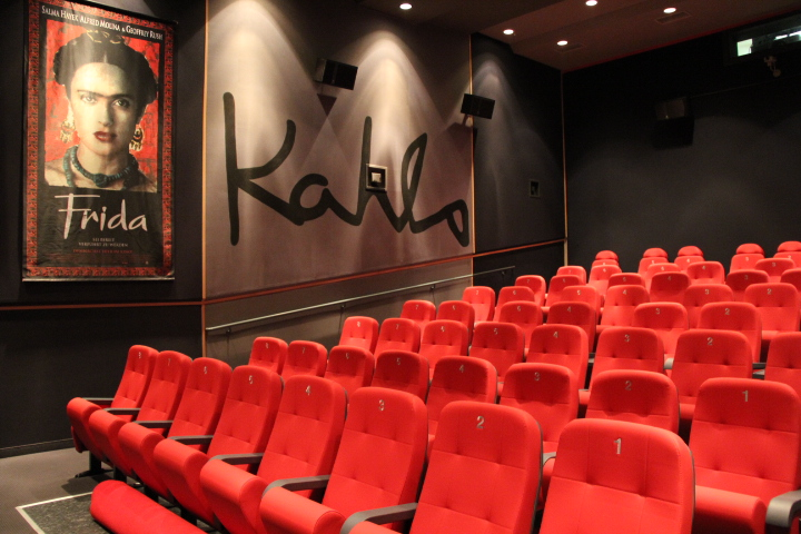 Saal 3 Frida Kahlo in der Filmgalerie Bad Füssing